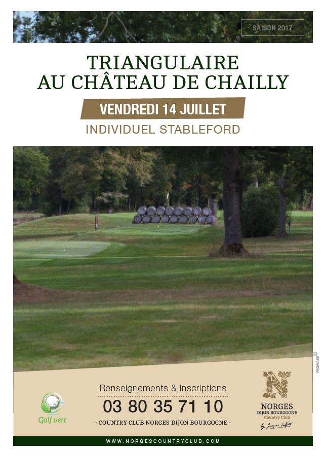 Triangulaire au château de Chailly